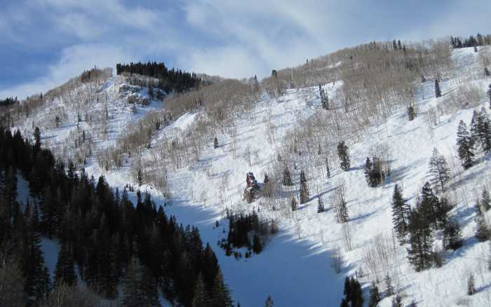 aspen tree skiing